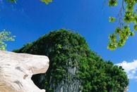 sunshine-phuket-01
